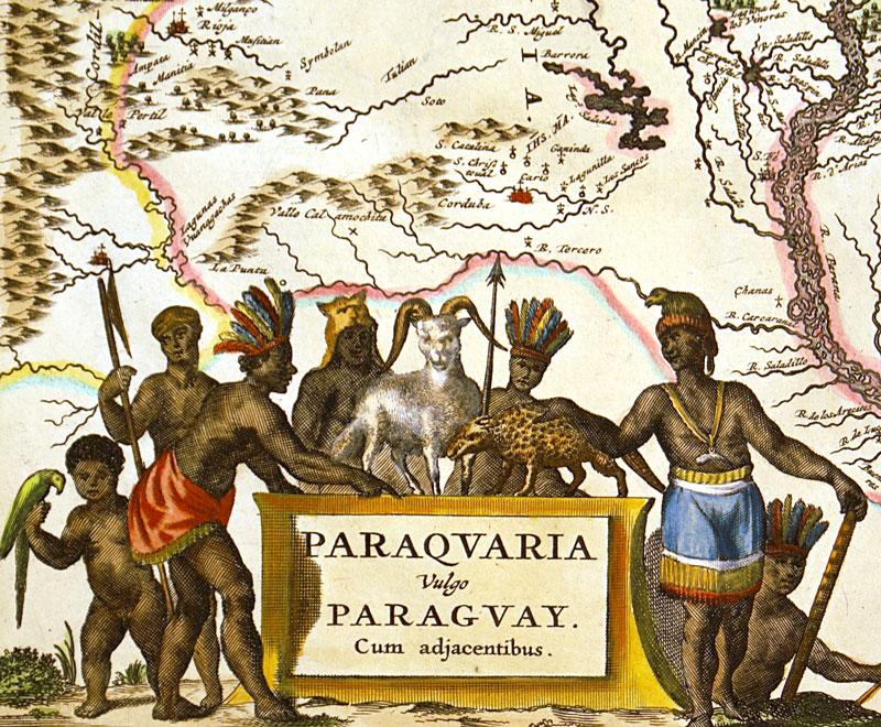 Paraqvaria Vulgo Paragvay Montanus C 1671 M 13224